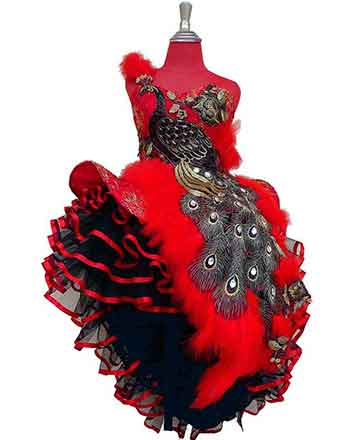 Marvellous, pageant dress, drum major dress in Red with a very nice peacock